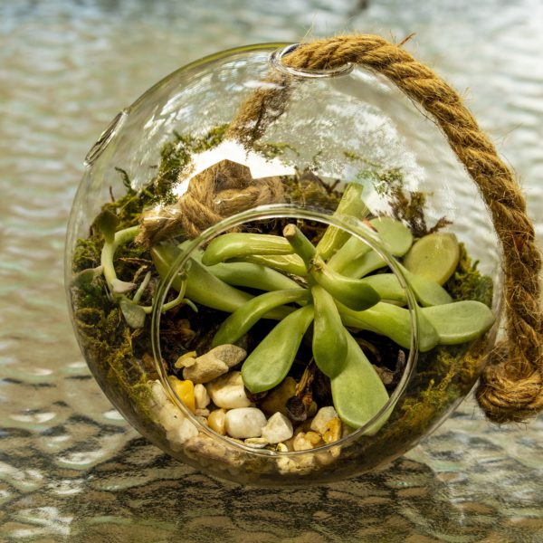 孕育學習生態圈:培養組織內外學習生態的關係網|太毅電子報