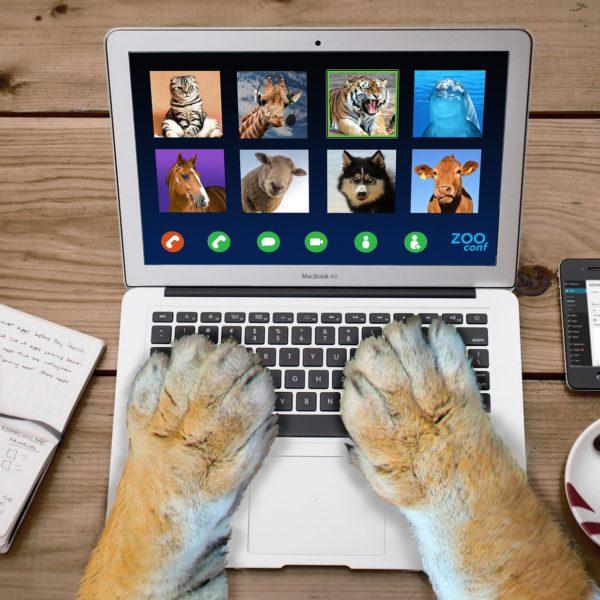 給後疫情時代忙於線上會議的你!6項加速遠距工作效率的能力